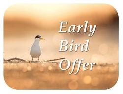 earlybird_rnd_250